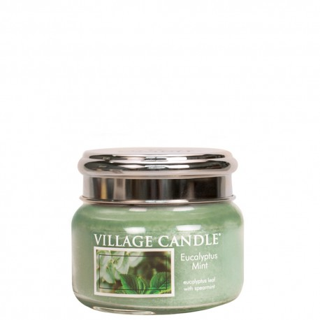 Eucalyptus Mint 11 oz